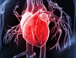 Cardiac repair with stem cells after myocardial infarction