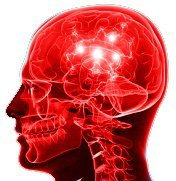 stroke stem cells treatment