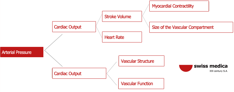 arterial hypertension causes