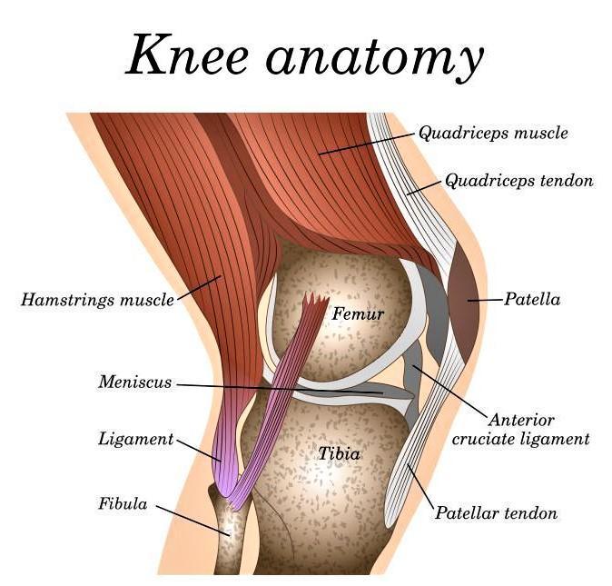 Knee pain treatment at Swiss Medica